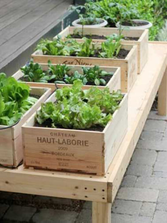 maison-chantal-b-DIY-potager