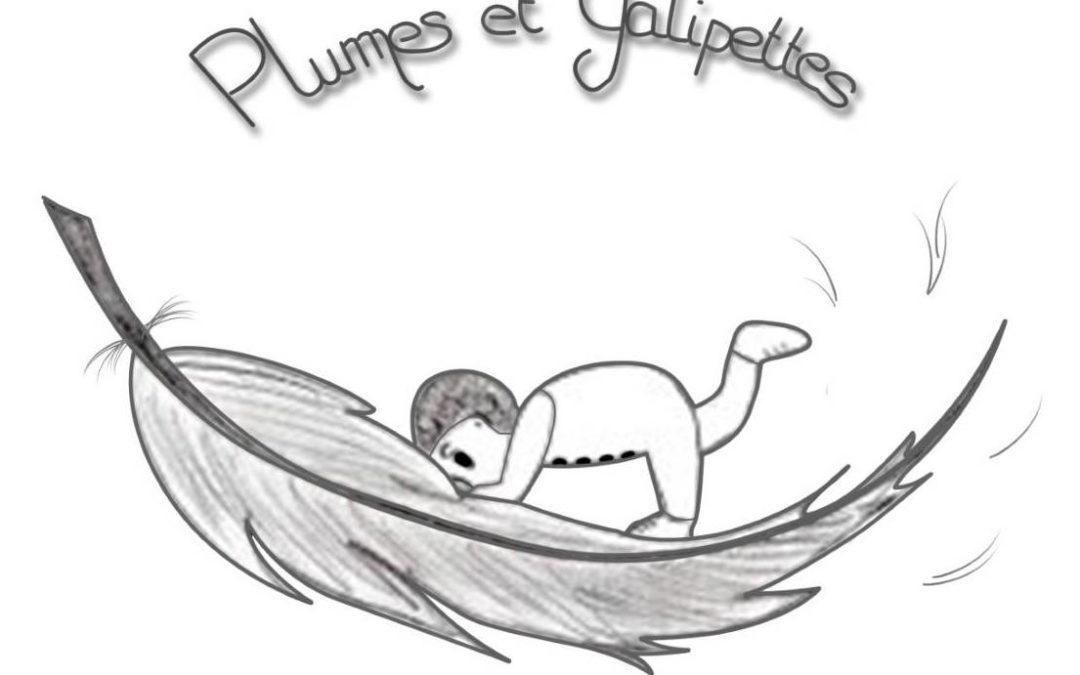 ASSOCIATION PLUMES ET GALIPETTES